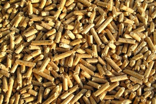 Nieuw/Biomassa.jpg